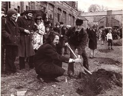Spike Milligan planting trees with VSI members at Glencree 1974