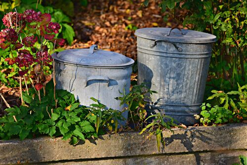Canva - Gray Metal Dustbins